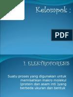 Triger Elektroforesis