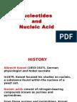Nucleiuc Acid