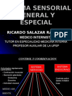 clase5neurofisiologiasistemasensorialgeneralyespecial-130216192127-phpapp02
