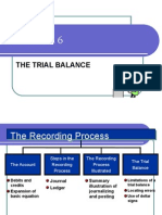 20140217170252chapter 6-The Trial Balance (1)
