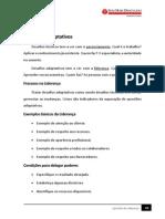45_apostilaApostila Em PDF - Liderança (Versão 2015-01-08)