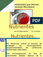 3.7   Nutrientes