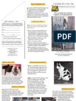 www catalystforcats net newsletters catalyst-for-cats-tri-fold