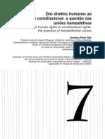 direito constitucional teoria queer uniões homoafetivas casamento gay estável.pdf