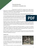 Evaluación económica del bosquecillo de Pura Pura