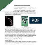 ResineEpoxy.pdf