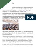 Demo Forex Sin costo