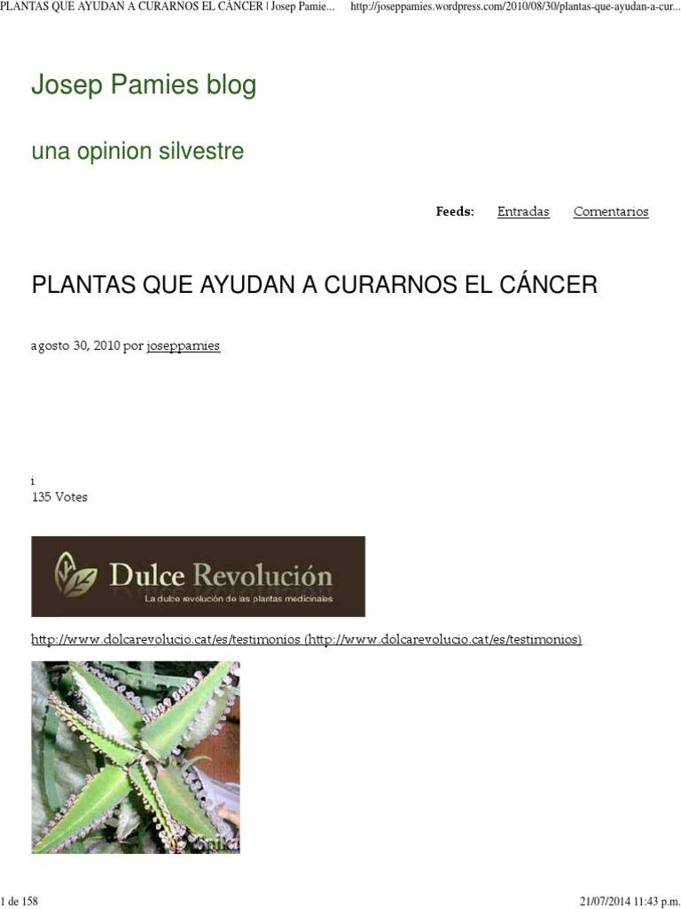 Plantas Que Ayudan a Curar El Cáncer   Josep Pamies Blog 16ee5b0a71c