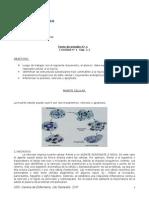 Muerte Celular ( Texto Estudio 1)