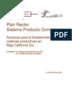 Plan Rector OviNOs