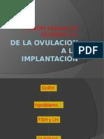 [Clase02] de La Ovulación a La Implantación (Dr Pérez)