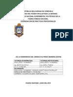 Informe Pp Yessika m 2