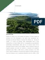 Microhistoria de La Sierra de Huautla2