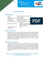 Modelo+de+Informe+Recomendadowisc