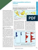 Carbon Accumulation in Southeast Asian Peatlands