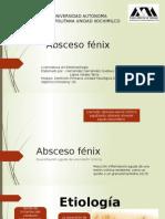 Expo Absceso Fenix