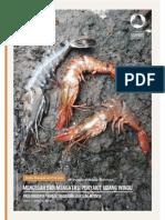 1_bmp_mencegah_dan_mengatasi_penyakit_udang_windu_pada_budidaya_tambak_tradisional_dan_s.pdf