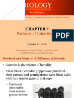 091 Patterns of Inheritance