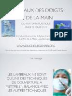Introduction Lambeaux des doigts-Cours revol
