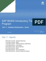 d3d94SAP BASIS Introductory Training Program - Day 11.pdf