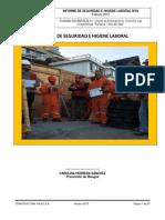 5. Informe de Seguridad e Higiene Laboral Las Golondrinas - Feb2015