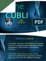The Cubli