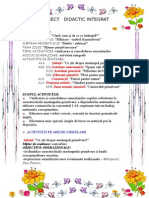 84106760-Proiect-Didactic-Integrat.doc