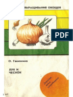 luk_chesnok.pdf