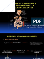 Digestion y Absorcion de Nutrientes. Generalidades.pptx
