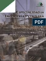 Ingeniería de Producción y Productividad de Pozos