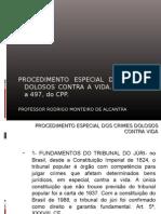 PROCEDIMENTO ESPECIAL DOS CRIMES DOLOSOS CONTRA A VIDA.
