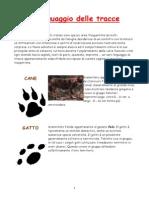 PDF-05 M-Il linguaggio delle tracce.pdf