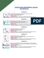 EJERCICIOS PARA PREVENIR EL DOLOR DE ESPALDA.pdf