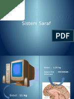 Sistem Saraf 2.pptx