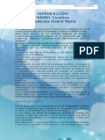 Manual de Reiki Mariel