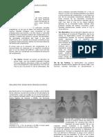 Sistema de Complemento (resumen)