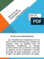 Moléculas inorgánicas y sales minerales