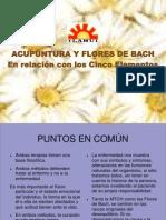 acupuntura_y_flores_de_bach_presentacion.pdf