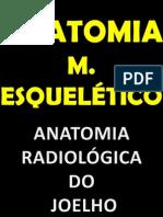 Anatomia m. Esquelético