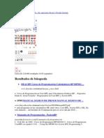 Usuario lector de pantalla.pdf
