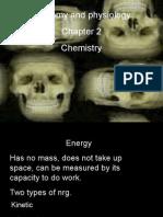 Anatomy Chp 2