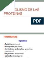 Metabolismo de Las Protei