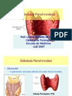 Medicina - Fisiologia. PTH, Calcitonina, CA, Fosforo y Mg