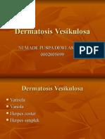 Dermatosis Vesikulosa-puspa