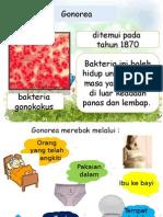 PKE torial M11 (Latest) - Copy