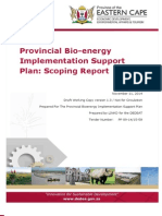 EC Bioenergy Implentation Support Plan Scoping Report