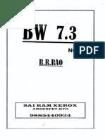 New BW 7.3