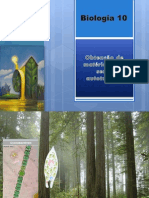 b10 Obtenodematriapelosseresautotrficos 120302041445 Phpapp01