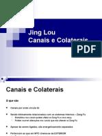 Canais e Colateriais Módulo II