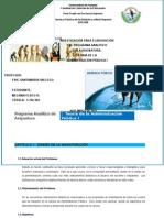 Programa Analit Copia Pract